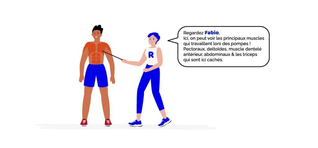 Renforcement musculaire et pompes : les principaux muscles qui travaillent