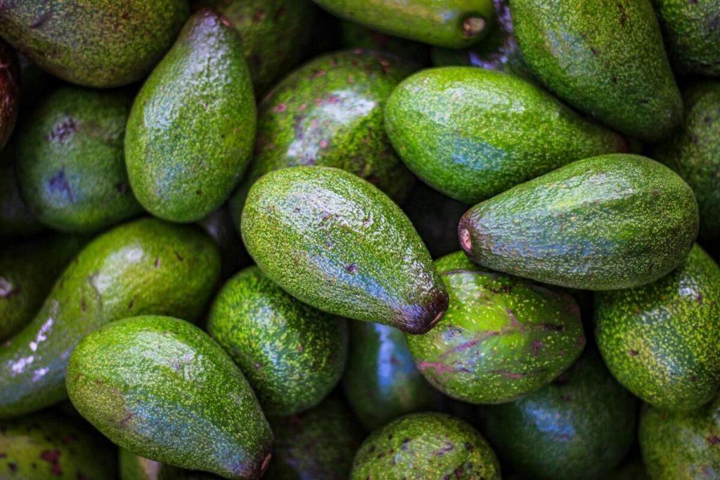 Avocats et nutrition